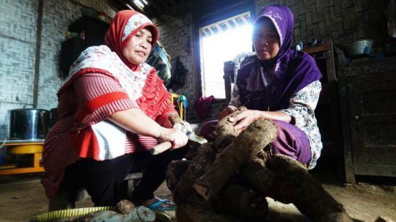 Buah Talas dan Hafalan Qur'an Para Ibu